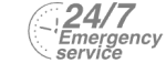 24/7 Emergency Service Pest Control in Lewisham, SE13. Call Now! 020 8166 9746